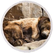 Brown Bear Asleep Again Round Beach Towel