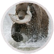 Brown Bear With Salmon Catch Round Beach Towel by Gary Langley