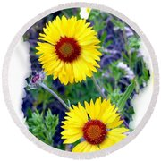 Brown- Eyed Susans Round Beach Towel