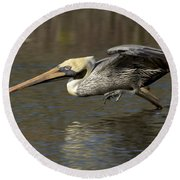 Round Beach Towel featuring the photograph Brown Pelican Fishing Photo by Meg Rousher
