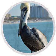 Round Beach Towel featuring the photograph Brown Pelican by Robert Meanor