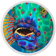 Brush Tail Wrasse Round Beach Towel