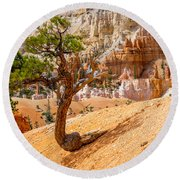 Bryce Canyon Np Round Beach Towel