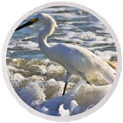 Bubbles Around Snowy Egret Round Beach Towel