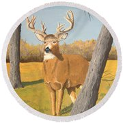 Bucky The Deer Round Beach Towel
