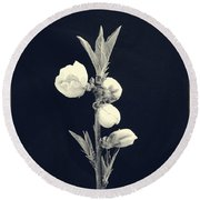 Budding Apples Round Beach Towel