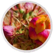 Budding Cactus Round Beach Towel by Fred Larson