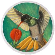Buff-bellied Hummingbird Round Beach Towel
