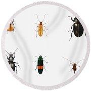 Bugs Round Beach Towel