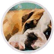 Bulldog Puppy Round Beach Towel