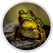 Bullfrog Watching Round Beach Towel by Bob Orsillo