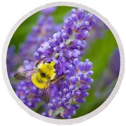 Bumble Bee And Lavender Round Beach Towel