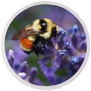 Round Beach Towel featuring the photograph Bumblebee On Lavender by Rona Black