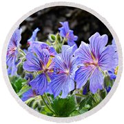 Round Beach Towel featuring the photograph Bunches by Clare Bevan
