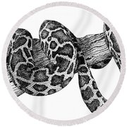 Burmese Python Round Beach Towel by Roger Hall