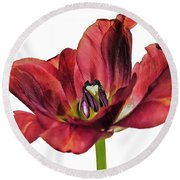 Burning Tulip Round Beach Towel