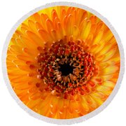 Burst Of Sunshine Round Beach Towel by Shelby  Young