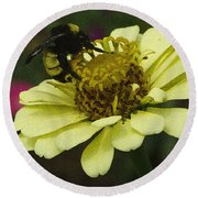 Round Beach Towel featuring the photograph Busy As A Bee  by James C Thomas