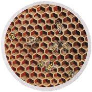Busy Bee 3 Round Beach Towel