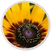 Round Beach Towel featuring the photograph Busy Bee by Denyse Duhaime