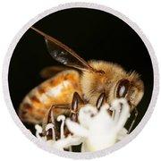 Busy Bee Round Beach Towel