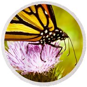Busy Butterfly Round Beach Towel by Cheryl Baxter
