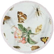 Butterflies Moths And Other Insects With A Sprig Of Apple Blossom Round Beach Towel