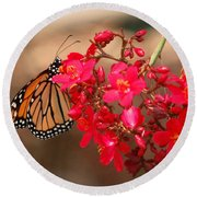 Round Beach Towel featuring the photograph Butterfly 1 by Leticia Latocki