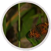 Butterfly 10 Round Beach Towel