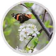 Round Beach Towel featuring the photograph Butterfly And Apple Blossoms by Penny Meyers