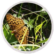 Butterfly At Signal Mountain Round Beach Towel by Belinda Greb