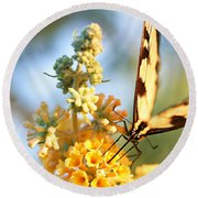 Round Beach Towel featuring the photograph Butterfly At Work by Trina  Ansel