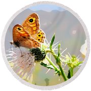 Butterfly Collect Juice  Round Beach Towel