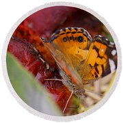 Round Beach Towel featuring the photograph Butterfly by Erika Weber