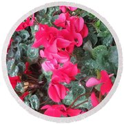 Round Beach Towel featuring the photograph Butterfly Garden Red Exotic Flowers Las Vegas by Navin Joshi