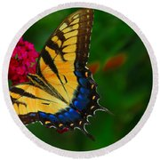 Round Beach Towel featuring the photograph Butterfly by Geraldine DeBoer