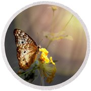 Butterfly Glow Round Beach Towel