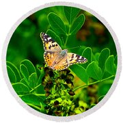 Round Beach Towel featuring the photograph Butterfly In Paradise by Gunter Nezhoda