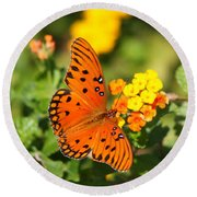 Butterfly In The Glades - Gulf Fritillary Round Beach Towel by Christiane Schulze Art And Photography