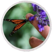 Round Beach Towel featuring the photograph Butterfly by Leticia Latocki