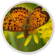 Round Beach Towel featuring the photograph Butterfly by James Peterson