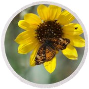 Butterfly On A Flower Round Beach Towel