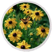 Butterfly On Black-eyed Susans Round Beach Towel