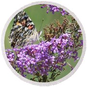 Round Beach Towel featuring the photograph Painted Lady Butterfly by Eunice Miller