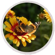 Butterfly On Flower Round Beach Towel by Charles Beeler