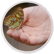 Round Beach Towel featuring the photograph Butterfly On Hand by Leticia Latocki