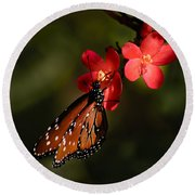 Butterfly On Red Blossom Round Beach Towel