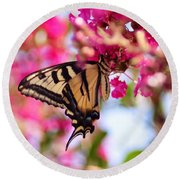 Butterfly On The Crepe Myrtle. Round Beach Towel