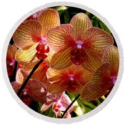 Round Beach Towel featuring the photograph Butterfly Orchids by Rodney Lee Williams