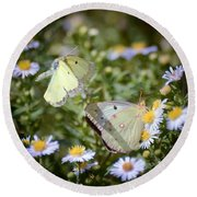 Round Beach Towel featuring the photograph Butterfly Moments  by Kerri Farley